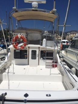 1991 Bertram 28 Flybridge