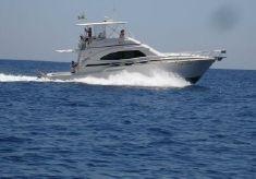 2005 Bertram 450