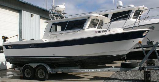 2002 Sea Sport 24 XL
