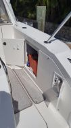 photo of  Sea Ray 350 Sundancer