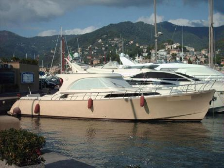 2008 Mochi Dolphin 51