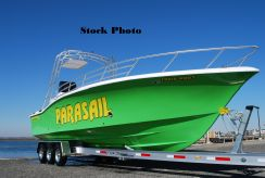 2009 Commercial Water Sports Ocean Pro 31 Parasail boat
