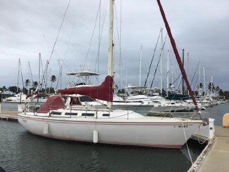 1984 Catalina
