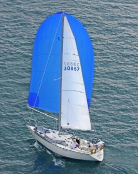 1981 C&C Yachts 34