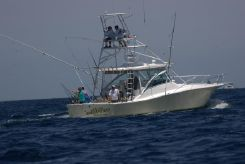 2002 Luhrs Open Fish