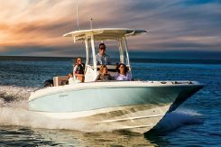 2019 Boston Whaler 270 Dauntless