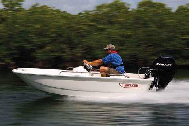 2020 Boston Whaler 110 Sport