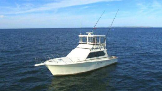 1987 Egg Harbor 43 Sport Fisherman