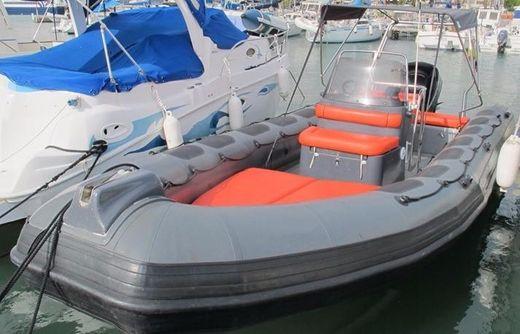 2011 Valiant 750