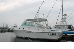 2001 Cabo Express