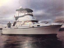 1981 Bayliner 3270 3288 Diesels