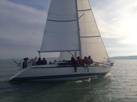 1990 X Yacht X 372