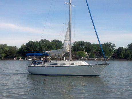 1977 Hunter Sail