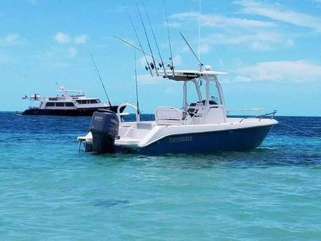 2010 Everglades 230 CC