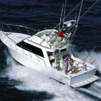 2000 Cabo Yachts 35 Flybridge Sportfisher