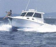 1996 Custom Gavazzi Luciano Nostromo 25 cabinato