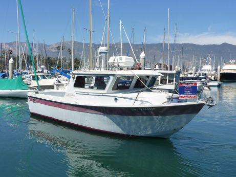 1991 Sea Sport Seamaster
