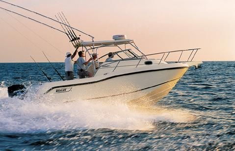 2003 Boston Whaler 255 Conquest