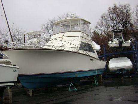 1985 Ocean Yacht Super Sport  Convertible