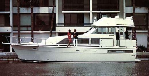 1974 Bertram 42 Flybridge Motor Yacht