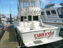 2001 Cabo Flybridge Sportfisher