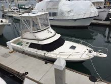 1993 Blackfin 29 Flybridge
