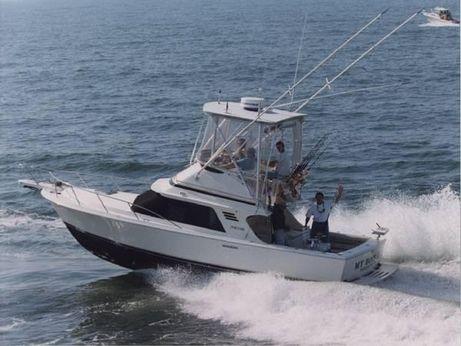 1993 Blackfin 29 Flybridge