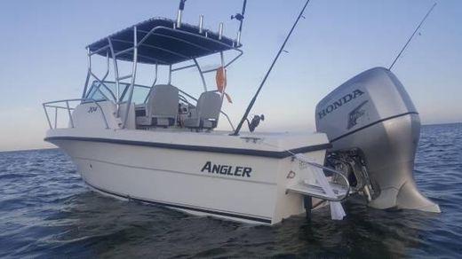 2004 Angler 204WA