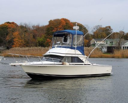 1989 Bertram 28 Flybridge