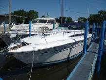 1989 Sea Ray 390 Express Cruiser - M