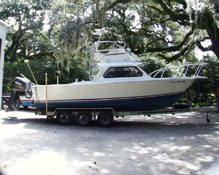 1999 Bertram Sport Fish