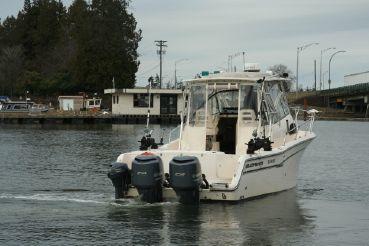 thumbnail photo 1: 2015 Grady-White Marlin 300