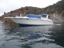 1990 Sea Ray 350 Express Cruiser