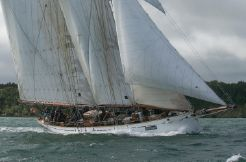 1902 White Brothers CORAL OF COWES