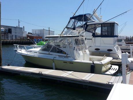 2003 Blackfin (built By Saltshaker) 29 Combi