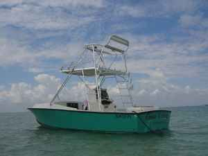 1975 Blackfin Cuddy Cabin w/ Single Yanmar