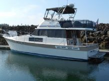 1984 Bayliner 3870 Motoryacht