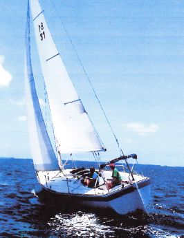 1981 Pearson Flyer
