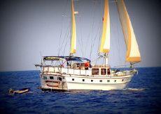 1983 Marine Trader Island Trader 46