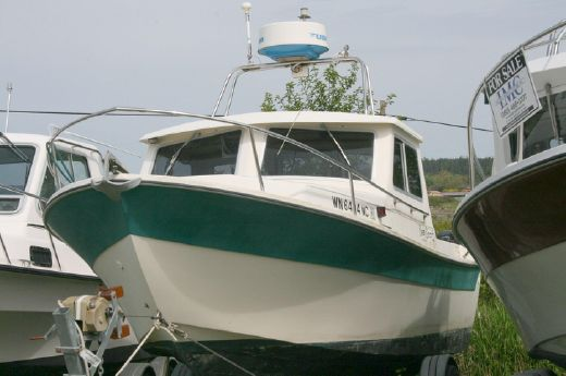 1991 Sea Sport 19' Skipper