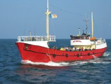 1955 Passenger Vessel Offshore sports fishing 86 pax