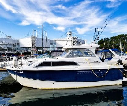 Discovery 246 Bayliner 2007