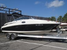 2010 Sea Ray SunDeck