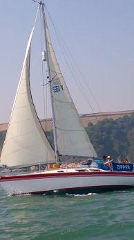 1979 Dolphin 31