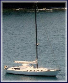 1977 Windward Marine Sea Raker 50