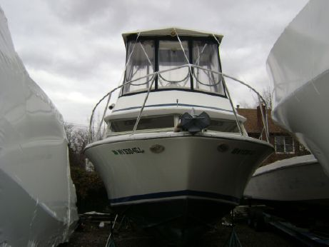 1984 Bertram Flybridge Cruiser