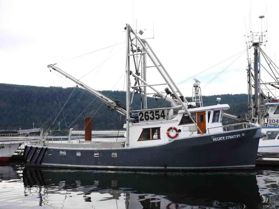 1979 Tender Longliner Packer Trawler Power Boat For Sale