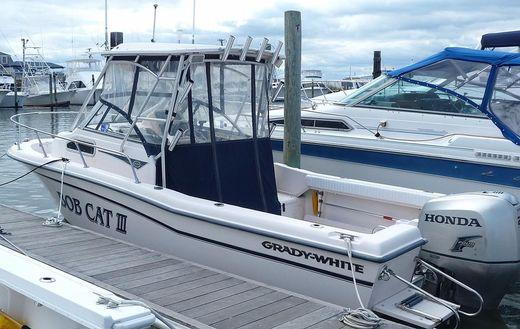 2003 Grady White Hardtop 226 Seafarer