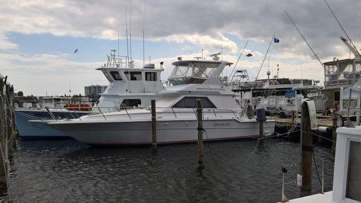 1988 Sea Ray 440 Convertible