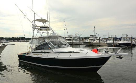 1995 Blackfin 33 Combi